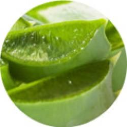 Dr Organic Bio Aloe Vera