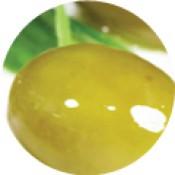 Bio Szűz olívaolaj