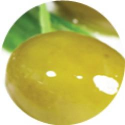 Dr  Organic Bio Szűz olívaolaj